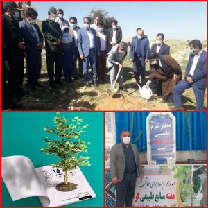 روز درختکاری با حضور کلیه ی مسئولین و مدیران شهرستان بهمئی